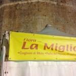 Vendita di salumi in corso Domenico Morea