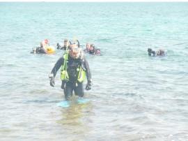 Sommozzatori in azione al Porto delle Alghe
