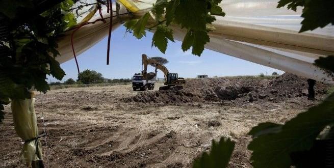 Discarica Martucci, tutti assolti dall'accusa di disastro ambientale: la città delusa dalla conclusione di uno dei processi