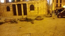 Le aiuole devastate all'ingresso del Municipio di Conversano