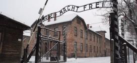 Ad Auschwitz c'era la neve. Un viaggio per la Memoria