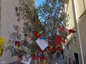 L'albero della legalità situato in piazza XX Settembre di fronte il palazzo Municipale
