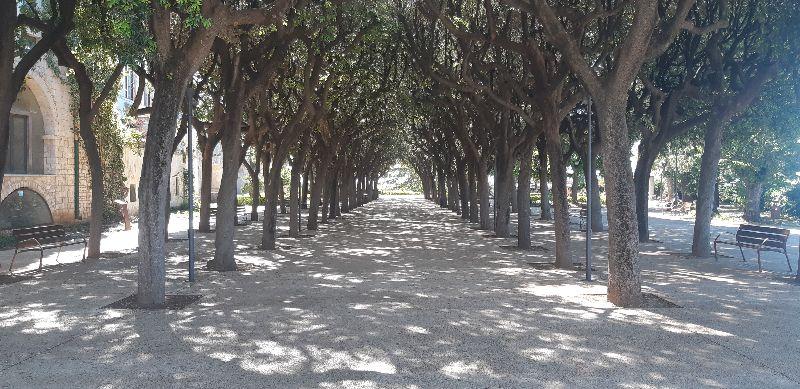 Viale alberato di Villa Garibaldi