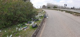 Scene inguardabili grazie agli sporcaccioni che lanciano rifiuti per strada