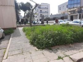 L'area antistante la sede delle Poste in via B. Croce con l'erba alta e incolta