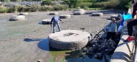 Lago di Sassano, atto d'amore di alcuni volontari per salvare gli animali agonizzanti